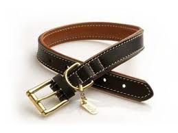 Hurtta leather collar