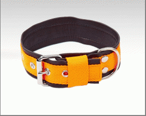 Orange nylon collar lined with soft moose skin