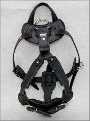 Harness with handle
