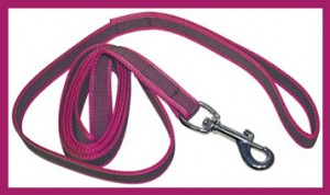 Leadantiglide with carabiner