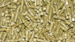 Chinchillapellets, 1Kg