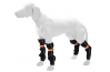 Gaiters for dog