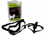 Y-harness with leash stretch