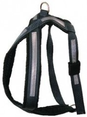 The hunter combination harness Size xxs