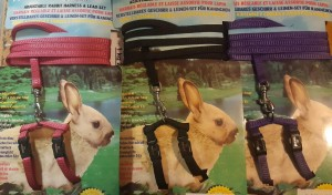 Rabbit harness with leash