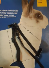 Rabbit harness with leash, nylon