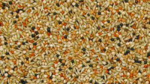 Budgerigar seed mixture deluxe, 1kg